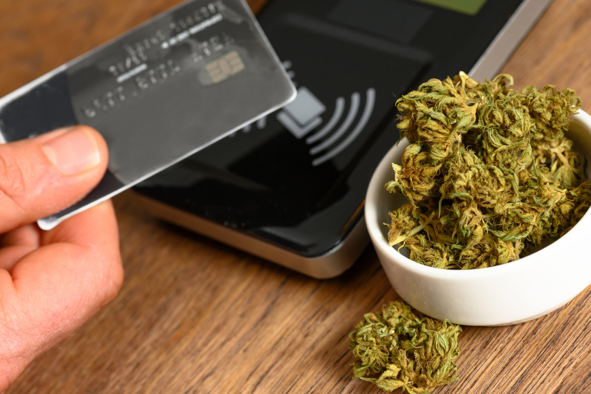 Data Security Demonstrated In The Cannabis Industry